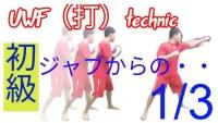 【UWF(打)technic】ジャブから・・・下がる