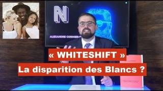 Whiteshift : La disparition des Blancs ?