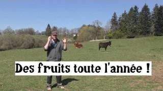 Forêt-comestible : Des récoltes toute l'année !