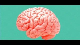 [Doc à Voir] – Le Temps De Cerveau Disponible