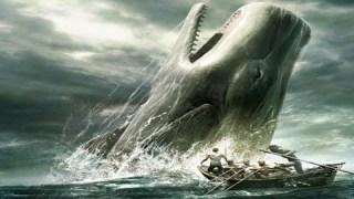 Les baleines devront désormais porter des masques ?