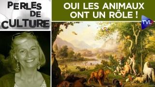 Oui les animaux ont un rôle ! – Perles de Culture n°263 – TVL