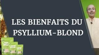 Le psyllium blond : les bienfaits santé d'une plante millénaire