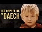Les orphelins de DAECH