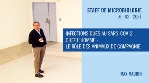 Infections dues au SARS-Cov-2 chez l'homme : le rôle des animaux de compagnie.