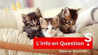 [CENSURÉ] lNF0 en OU3STl0NS #44 – LlVE avec Thierry Casasnovas