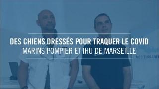 Des chiens dressés pour traquer le covid : marins pompier et IHU de Marseille