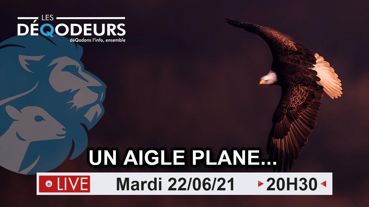 Un Aigle Plane…