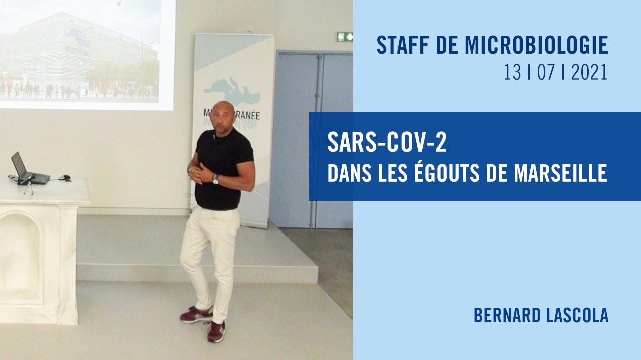 SARS-CoV-2 dans les égouts de Marseille