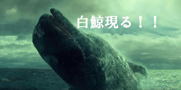 白鯨との闘い