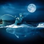 15の夜、暗い夜中の海へ/大人達の遊び~奄美大島移住日記~