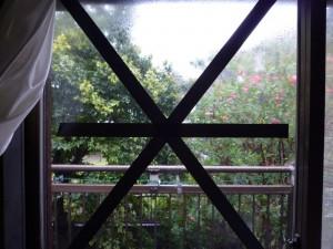 台風,雨戸,ない