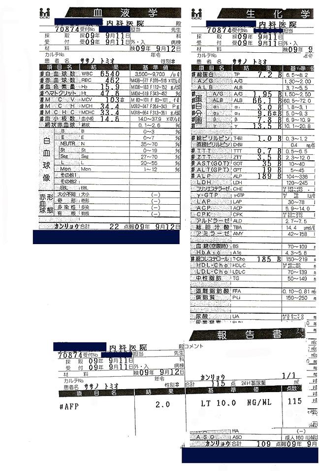 笹野富美夫血液検査(20090911):肝臓がん末期闘病記