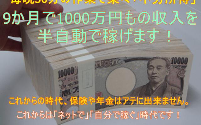 9か月で1000万円もの収入を得られる、ソフトの設定と稼働方法
