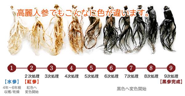 高麗のめぐみで利用される。黒参と紅参