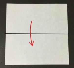 ri-su1.origami.1