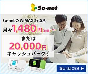 So-netポケットWifi