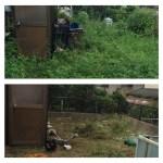庭の草刈り、片付けします!荒れた庭も綺麗にします