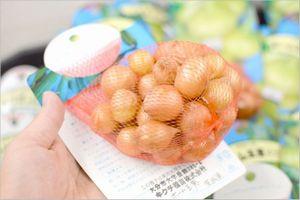 ホーム玉ねぎ 栽培