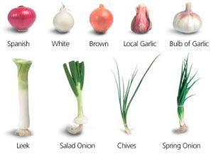 ネギ 野菜