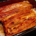 市販のウナギの美味しい食べ方・温め方【お家でうな丼】