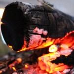 バーベキューの燃料の種類解説!炭・ガスどっちが合うか教えます!