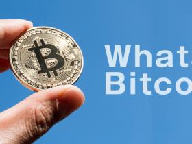 bitcoinとは何か?