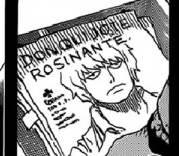 rosinante-300x156