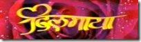 dilmaya Nepali full movie