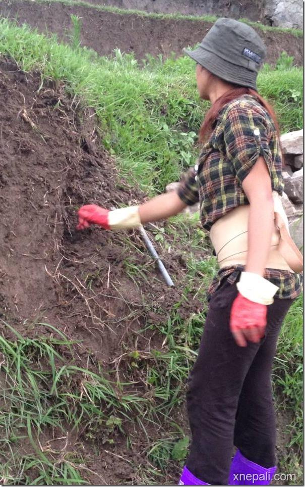 binita baral working in field