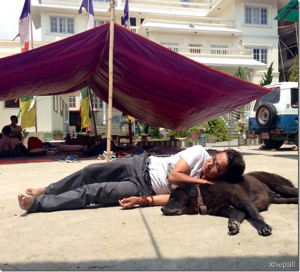 rekha thapa and himgyap lama sleep on street (7)