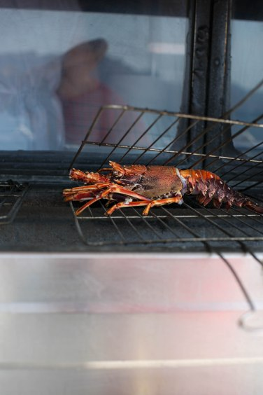 lobster grill (1 of 1)