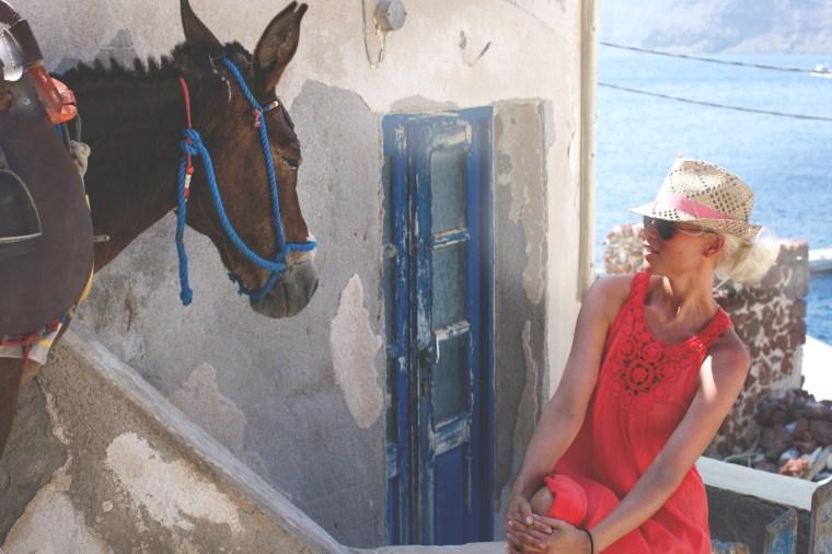 donkey oia (1 of 1) kopio