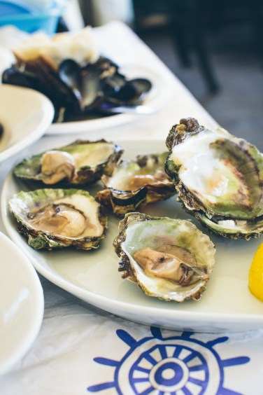 oysters (1 of 1)