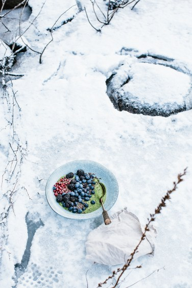 arctic style smoothie1 (1 of 1)