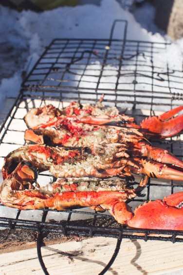 grilled campfire seafood21 (1 of 1)