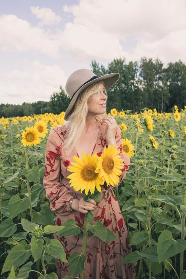 sunflower fields1
