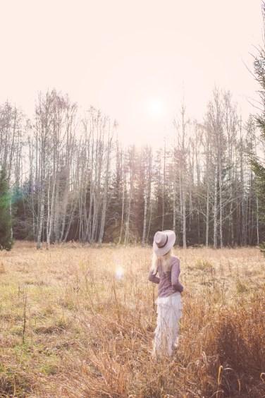 november forest2