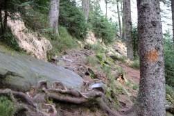 """""""Dieser Weg, wird kein leichter sein"""" ... doofer aber naheliegender Ohrwurm (Abstieg Wilder See)"""