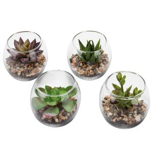 Clear Mini Vases