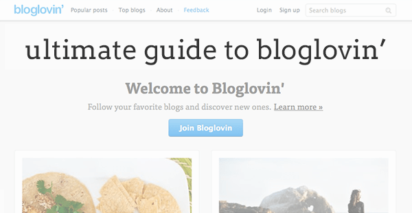 ultimate guide to Bloglovin