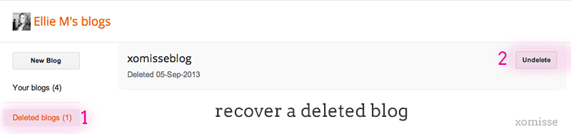 recover-deleted-blog