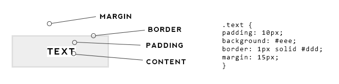 HTML for Beginners - The Box Model. The difference between margin and padding in CSS.