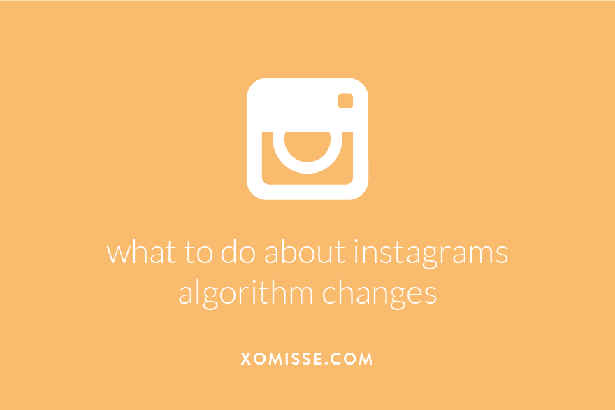 Instagram algorithm changes - what to do to kep your audience?