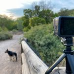 Hero9 Black shorty tripod