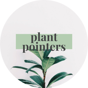 if you love plants