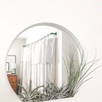 Air Plant Display with IKEA Mirror