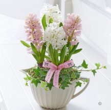 mothers day - flowers 2