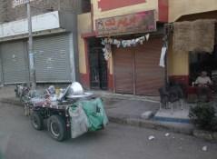 Donkey carts on street Luxor