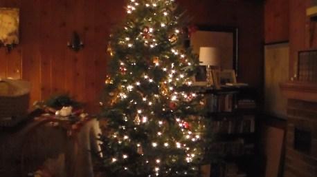 20161223xd_xmas_tree-11